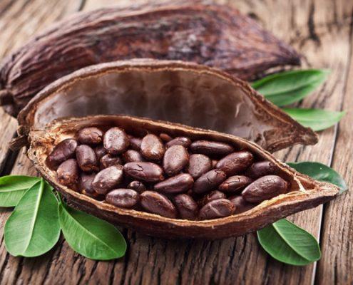 organic_cacao